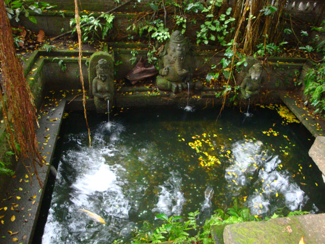 Bali Trip - Ubud Monkey Forest - Wishing Pond