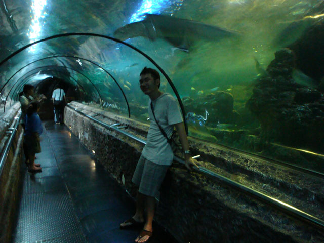 Ancol trip - Sea World - The Tunnel