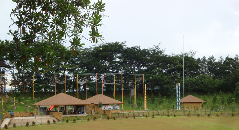 Sentul and Sand Sculpture - Flying Fox