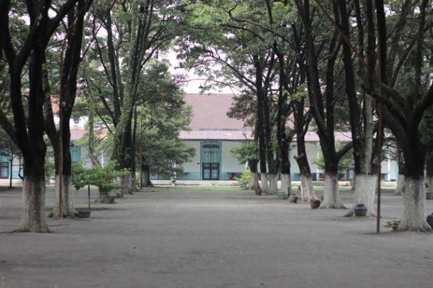 Solo trip - Keraton Kasunanan - Sand Garden and Sawo Kecik trees (Wongai Plum trees)