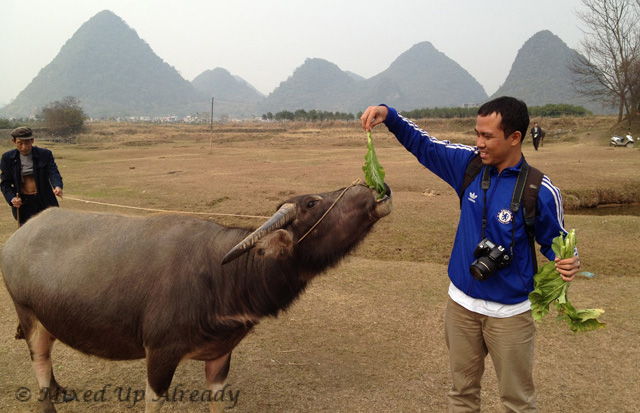 China trip - Guilin - Yulong (Yu Long) River Cruise - Firman and the water buffalo