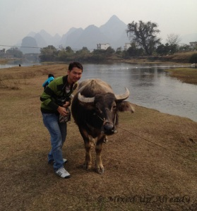 China trip - Guilin - Yulong (Yu Long) River Cruise - Me and the water buffalo