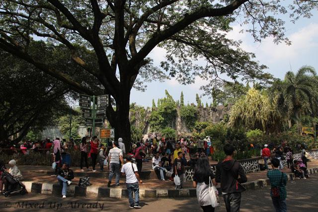 Ragunan zoo - Near the entrance