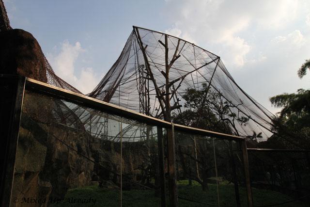 Ragunan zoo - Schmutzer - Boti's cage
