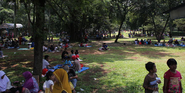 Ragunan zoo - The Crowd