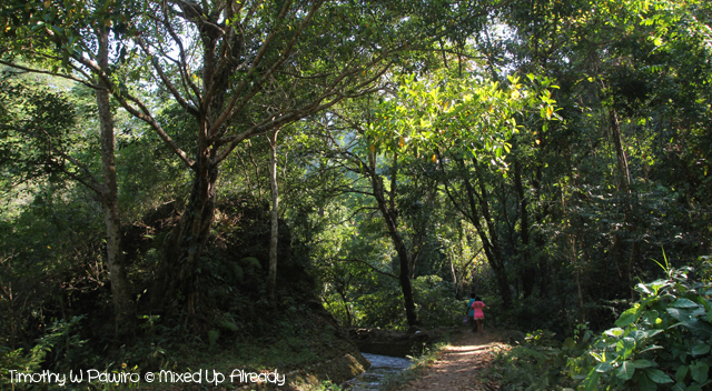 Lombok slomo trip - Beautiful Waterfalls of Lombok - Senaru - Trekking to Tiu Kelep Waterfall