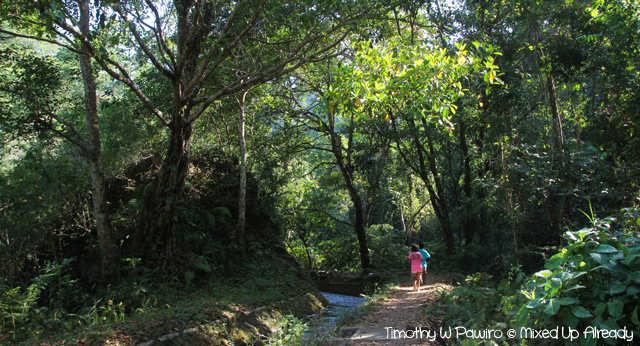 Senaru Lombok trip - Trekking to the Tiu Kelep waterfall