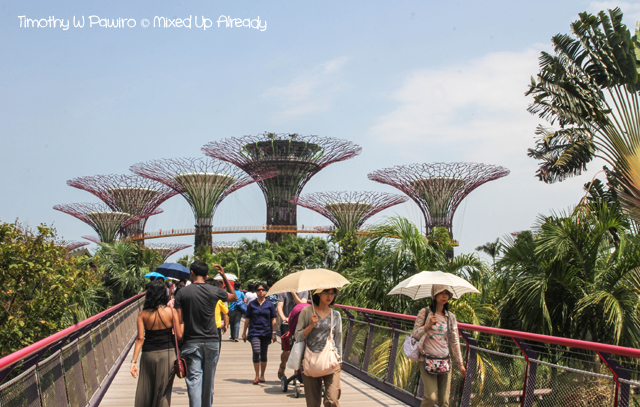 Gardens by the Bay - Dragonfly bridge