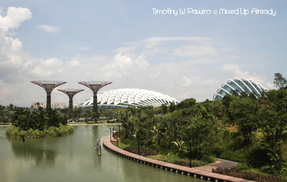 Gardens by the Bay - Silver Garden, Flower Dome, and Cloud Forest