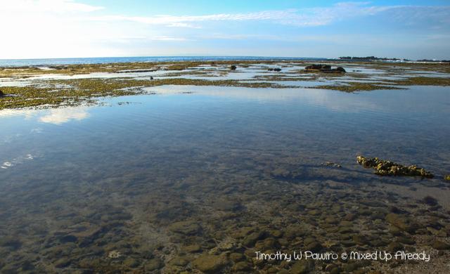 Sawarna (Indonesia) trip - The beach between Lagoon Pari and Tanjung Layar
