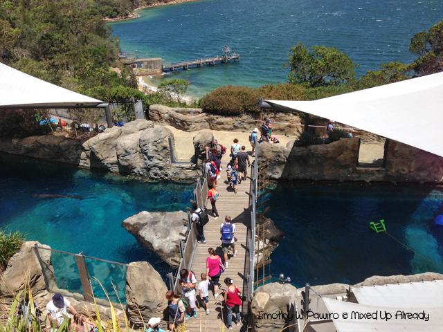 Australia trip - Sydney - Taronga Zoo (2)
