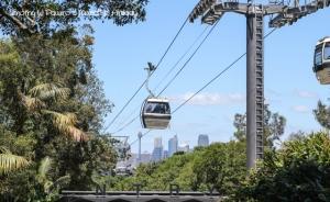 Australia trip - Sydney - Taronga Zoo - Sky Safari